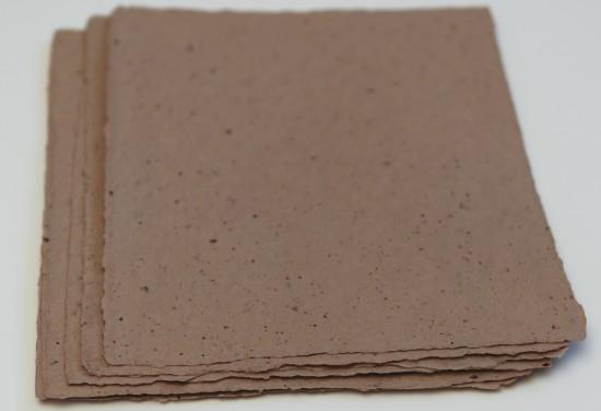 CacaoBeanPaper